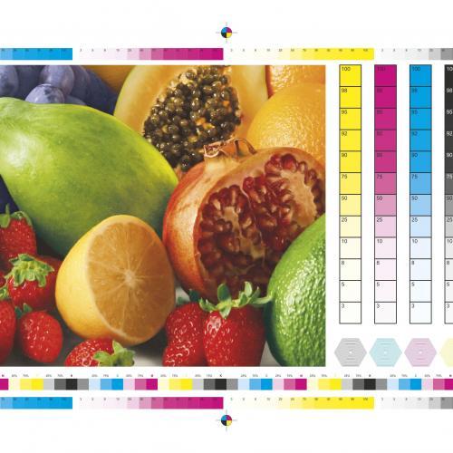 4-цветен флексов печат
